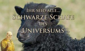 Seth - Ihr seid ALLE... schwarze Schafe des Universums!